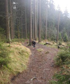 Trail & Hike